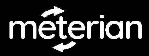 Meterian Logo